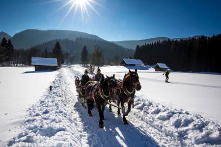 Con la slitta trascinata dai cavalli (ph. Ufficio Turismo Stiria)