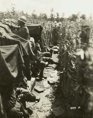 Carso 1915. Trincea italiana sul monte Sei Busi (ph. A. Spanghero)