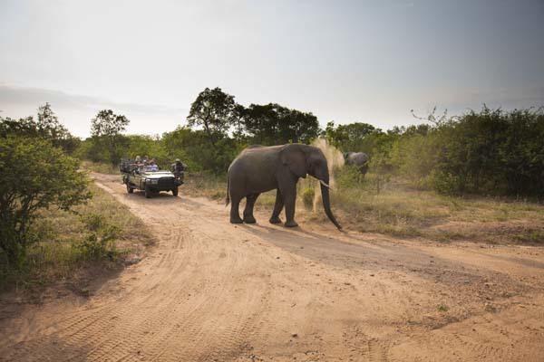 Sudafrica, Kapama Karula