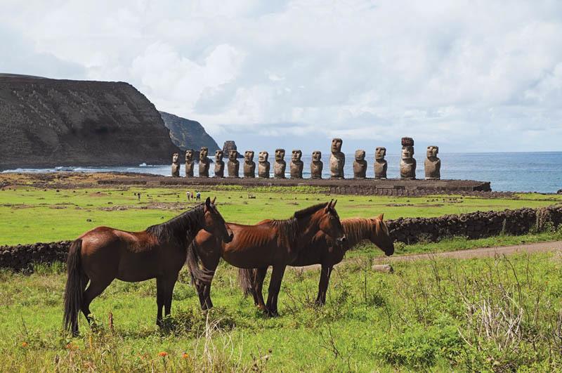 I cavalli davanti ai 15 moai di Aku Tongariki (ph. C. Pizzin)