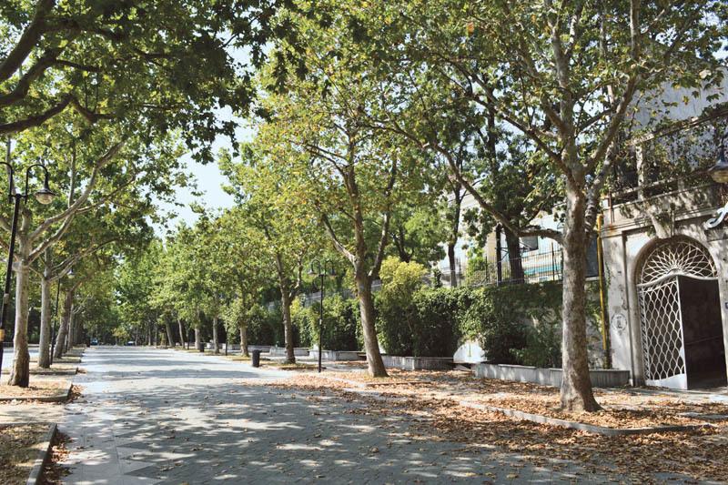 Trieste, viale Romolo Gessi. A pochi passi da qui sorgeva la villa di Italo Svevo e della moglie Livia Veneziani distrutta nella Seconda Guerra Mondiale