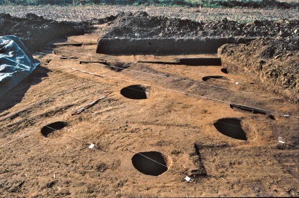 Scavi nel villaggio neolitico di Pavia di Udine