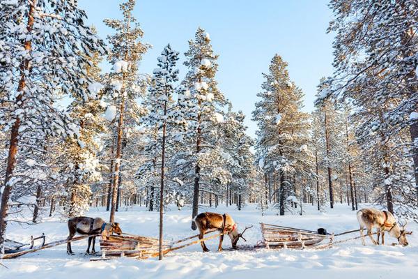 Finlandia (ph. CartOrange)