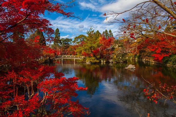 Giappone, autunno (ph. CartOrange)