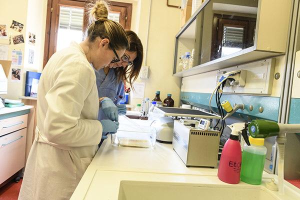 Il nuovo laboratorio di genomica di Udine