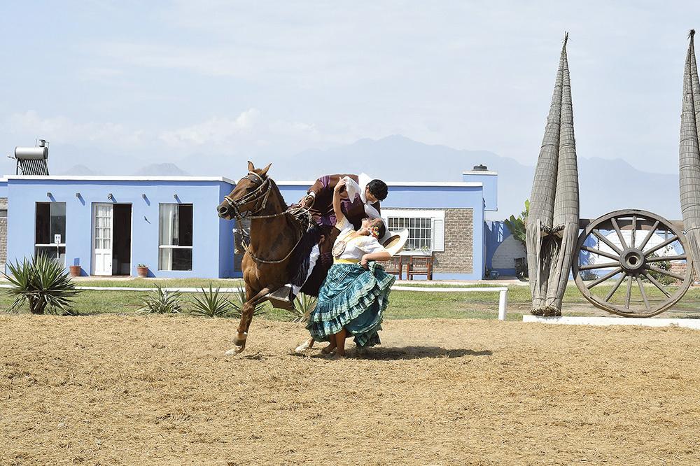 Truijllo, spettacolo della Marinera y caballo de paso peruano, danza tradizionale peruviana (ph. Claudio Pizzin)