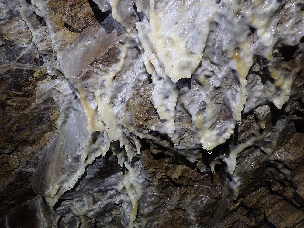 La scoperta sotterranea a Lucinico