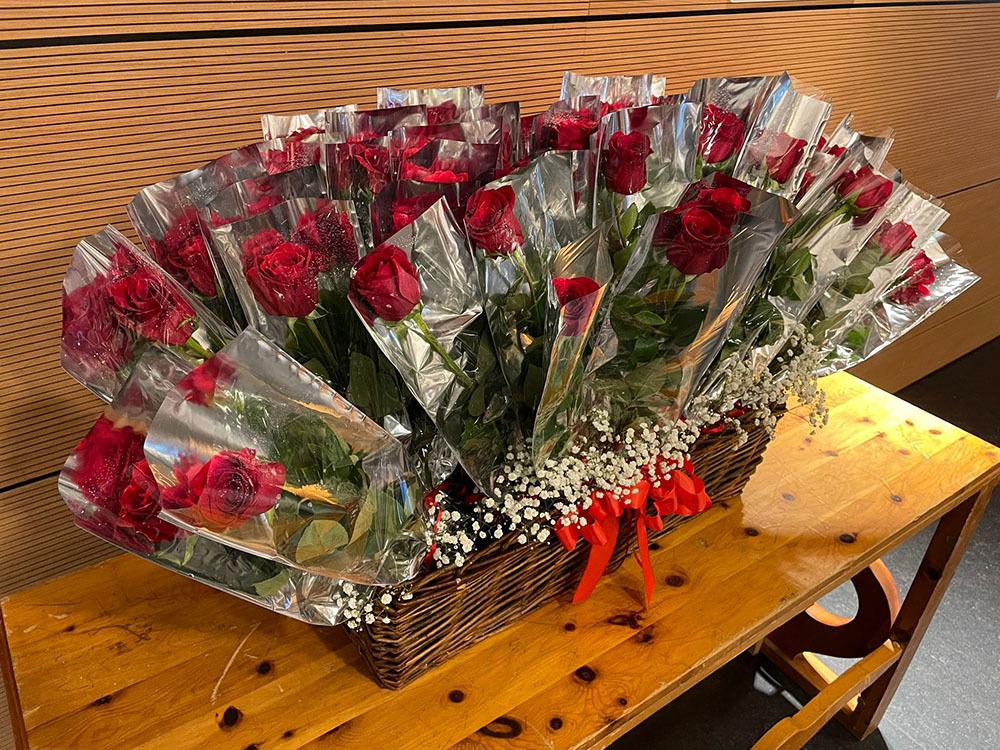 Le rose rosse donate dalla famiglia friulana