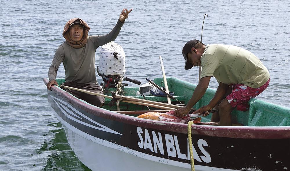 Pescatori vendono il pesce a... domicilio