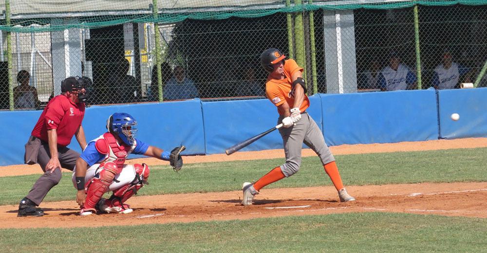 Tigers - Baseball Rovigo