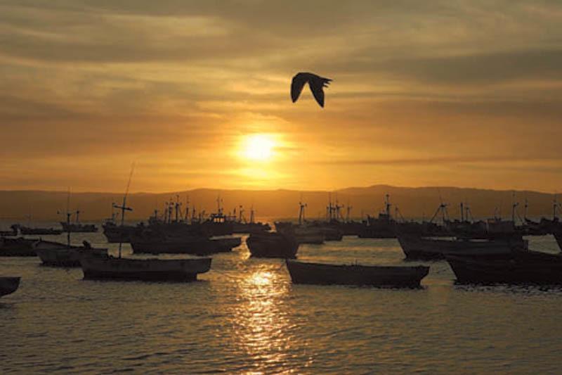 Tramonto del porto di Paracas (ph. C. Pizzin)